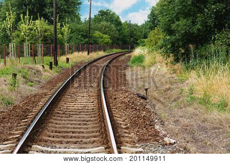 Bending rail tracks disappearing in lush green forest