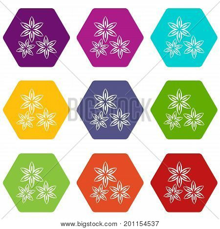 Star anise icon set many color hexahedron isolated on white vector illustration