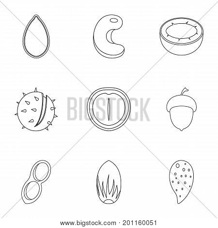 Nuts food nutrition icon set. Outline set of 9 nuts food nutrition vector icons for web isolated on white background