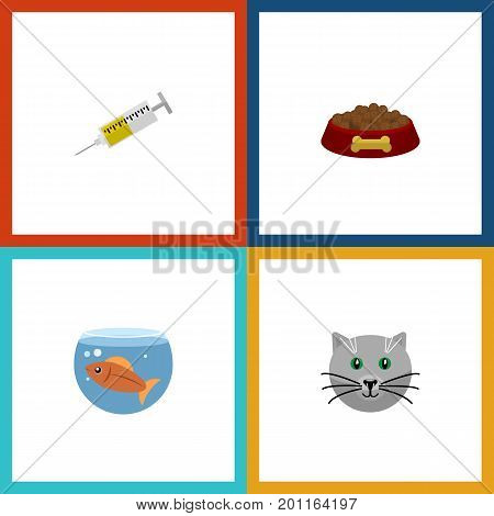 Flat Icon Pets Set Of Vaccine, Dog Food, Kitty And Other Vector Objects
