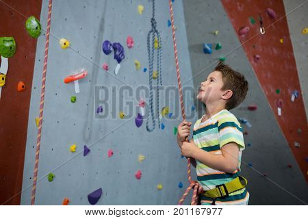Adorable boy preparing for rope climbing in fitness studio