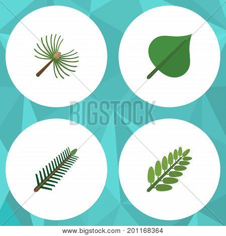Flat Icon Ecology Set Of Rosemary, Leaves, Hickory And Other Vector Objects