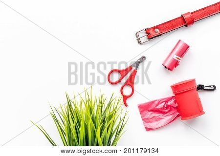 care about pet with collar and red grooming equipment on white table background top view mockup