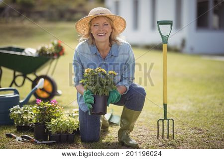 Portrait of smiling senior woman holding sapling plant in garden on a sunny day