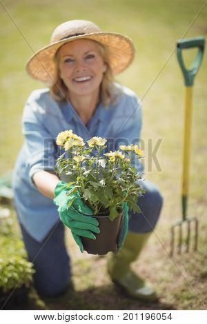 Portrait of senior woman offering a plant sapling in garden