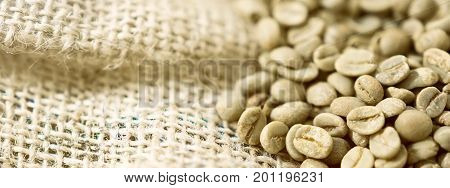 Green unroasted Coffee Beans in a sack. Green unroasted Coffee