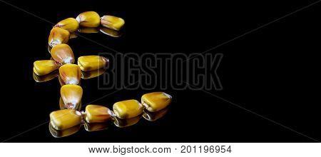 Corn Kernels Forming Pound Sterling Symbol. Corn Market. Corn Kernels.