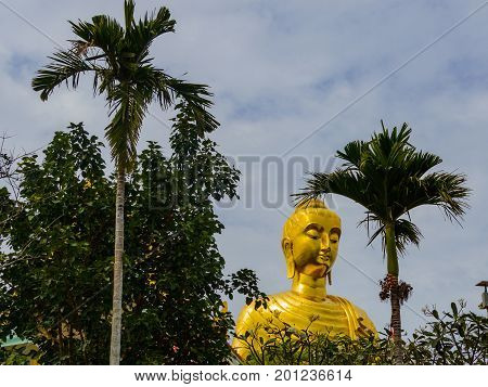 Golden Statue Of Buddha Among The Palm Trees On The Sky Background