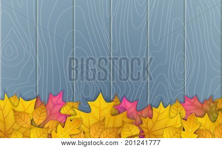 autumn leaves on wooden blue background. top view vector illustration