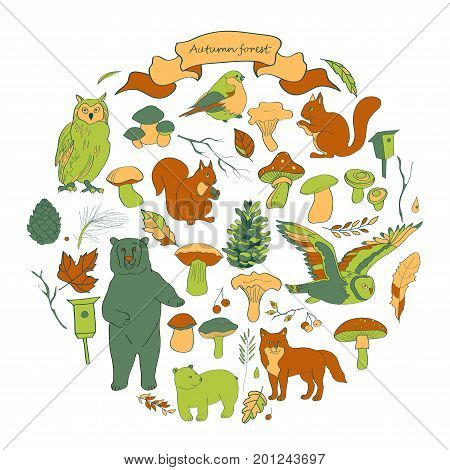 Watercolor illustration set with the image of leaves branches berries flowers animals and birds autumn elements bear squirrels fox owl. Brown orange green beige ocher gray shades vector