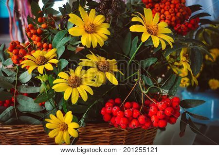 Autumn Bouquet With Aster Flowers And Dry Leaves