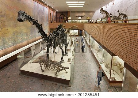 MOSCOW RUSSIA - AUGUST 20 2017: Skeletons of dinosaurs at Paleontological Museum. The museum is named after Yuri Orlov (1893-1966).
