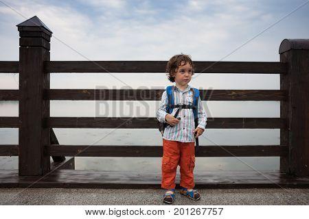 A Boy Is Walking Along A Bridge In A Park.