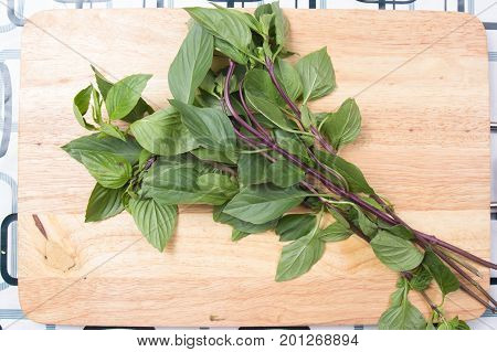 Thai basil leaf on wooden broad / Cooking green curry concept