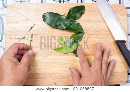 Chef shred kaffir lime leaves by hand. / Cooking green curry concept