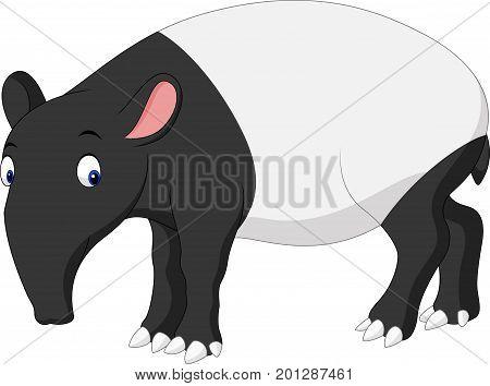 Vector illustration of Cartoon Asian tapir on white background