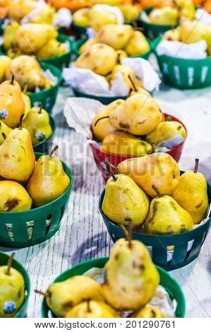 Closeup of golden pears in baskets in farmers market showing detail and texture