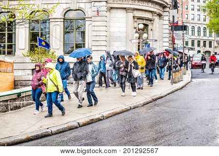 Quebec City, Canada - May 30, 2017: Tour Group Of People Walking In Heavy Rain With Umbrellas