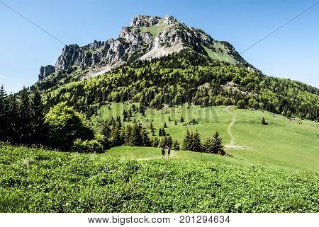 rocky dolomitian Velky Rozsutec hill with mountain meadow and hiking trail with hikers on Medziholie in Mala Fatra mountains in Slovakia during nice day with clear sky