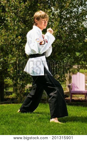 Teenage boy striking a pose from karate classes.