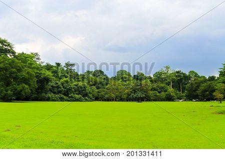 Green field at Wang Ta Krai Waterfall Nakhon Nayok District Nakhon Nayok THAILAND.