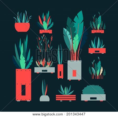 ector illustration set of decorative plant flowers on a dark background