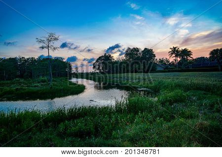 River In The Swamp At Sunset