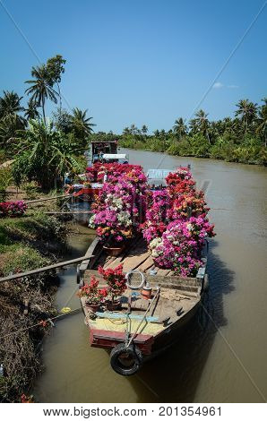 Carrying Flowers By Boat In Southern Vietnam