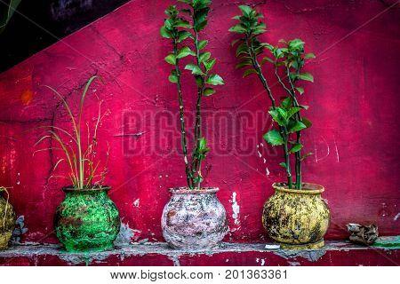 a beautifull colourfull pot at jogja yogyakarta indonesia java