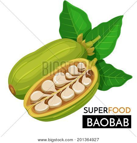 Baobab vector icon. Healthy detox natural product superfood illustration for design market menu superfood .