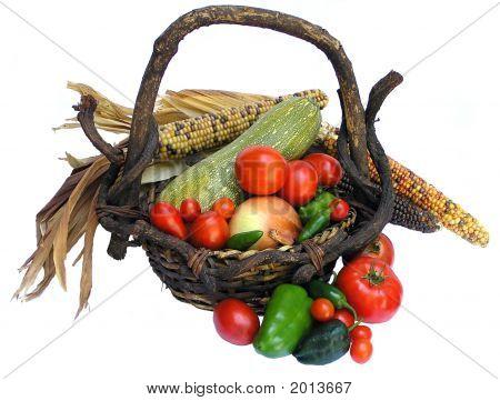 Autumn Garden Harvest In Rustic Basket