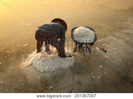 Salt Field In Ninh Hoa Township, Vietnam