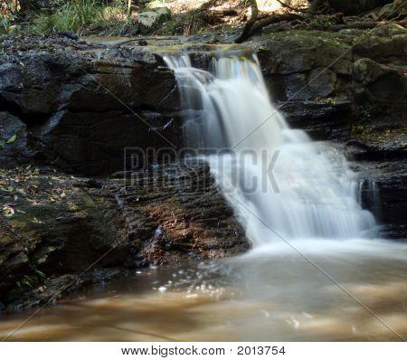Rainforest Stream 2