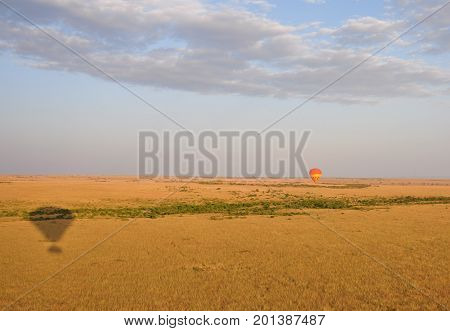 Sailing two balloons over the Serengeti, seen with shadow