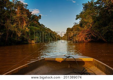 Wooden Boat Floating On The River Kinabatangan And Dense Tropical Forest. Sabah, Borneo, Malaysia