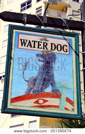 Armacao De Pera Algarve Portugal - October 10 2014 : The Water Dog pub sign in Armacao De Pera