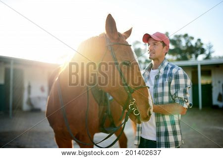 Closeup of a chestnut horse standing in fornt of stables on a farm being prepared to go for a ride by a smiling man