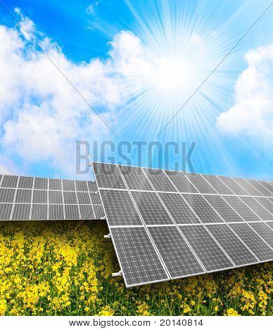 Solar energy panels on a rapeseed field against sunny sky.