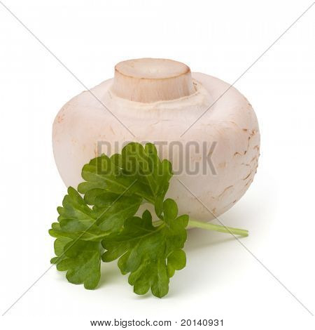 Champignon mushroom and fresh parsley isolated on white background