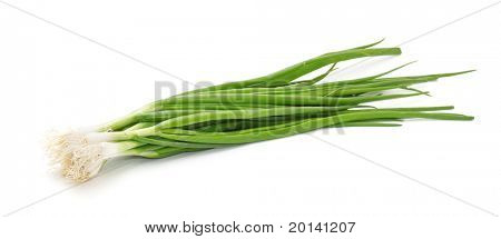 Chives on a white background