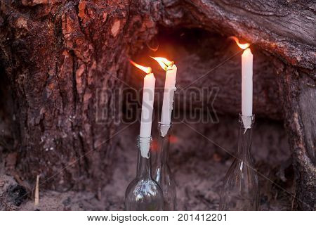 Wedding decorations in rustic style. Outing ceremony. Wedding in nature. Burning candles in bottles in forest