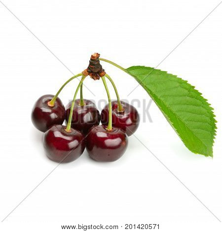 A ripe cherries isolated on white background