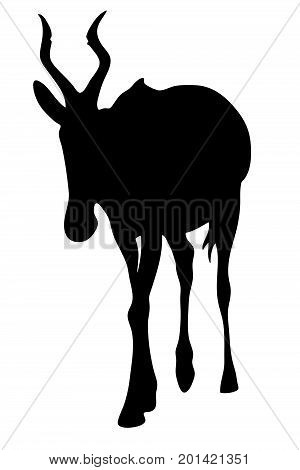 View on the silhouette of a red hartebeest - digitally hand drawn vector illustraion