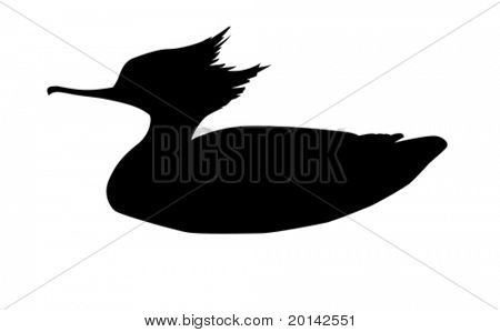 vector silhouette duck on white background
