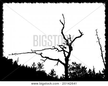 vector drawing old tree on torn sheet of paper