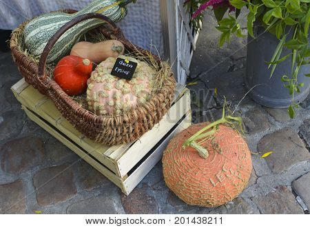 Pumpkins and various kinds of courgettes in a straw basket on the market in France