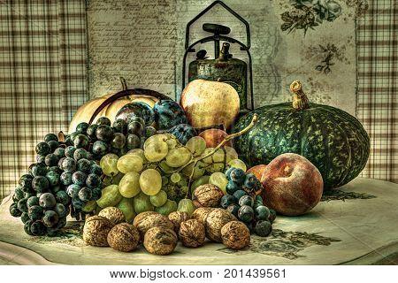 grunge fruits and pumpkins vintage illustation coloured