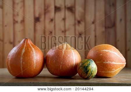 Small Pumpkins On An  Kitchen Table