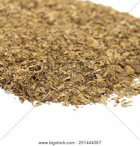 Selective focus on unprocessed dried tobacco leaves ideal for copy space with the concept of health warnings white background.