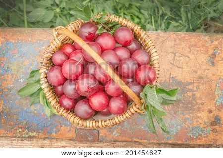 Plums In A Basket On The Table. Fresh Plums In Basket